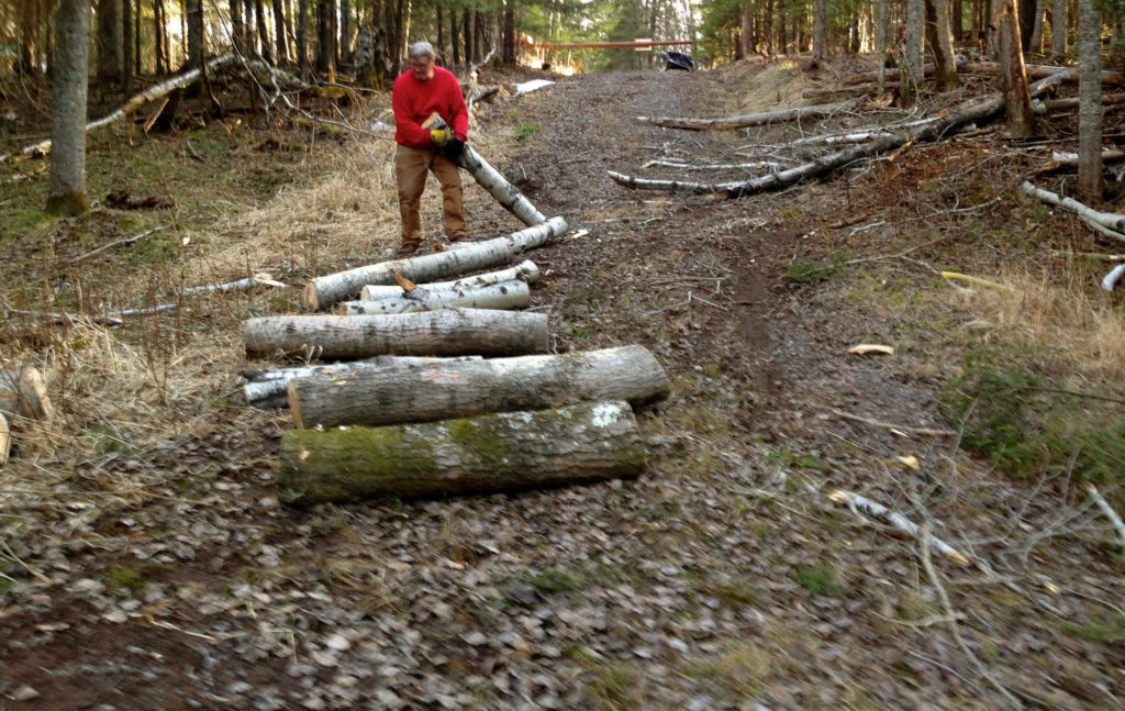 Laying the logs out.