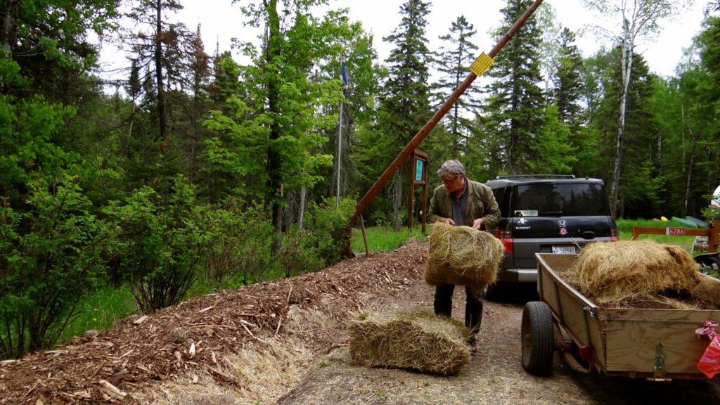 Laying down woodchips