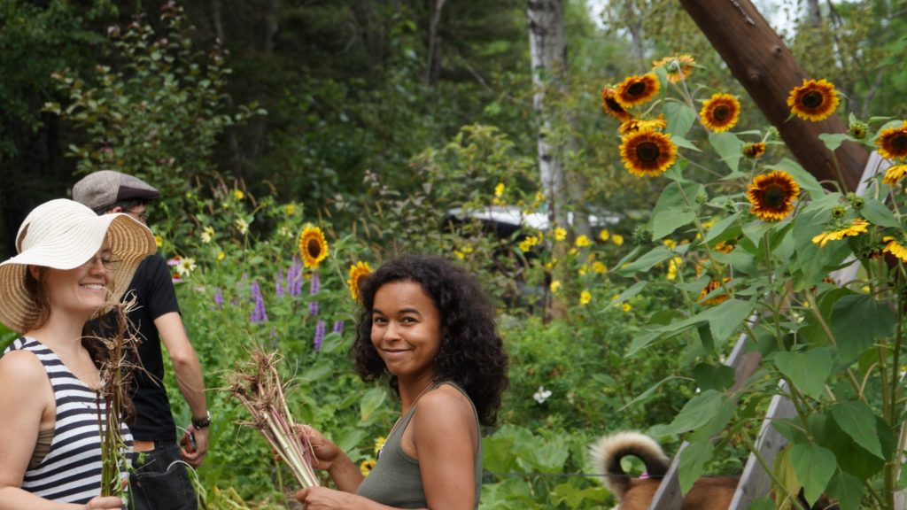 Permaculture-year-2289